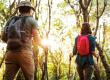 Tanösvények, túraútvonalak